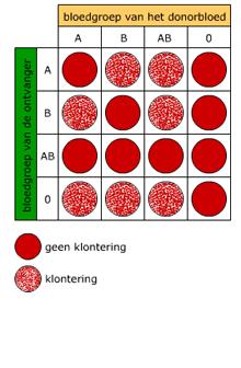 bloedtransfusie bloedgroepen
