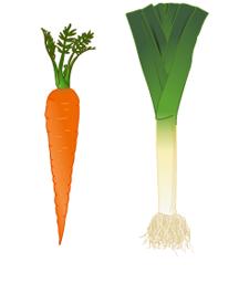prei en wortel