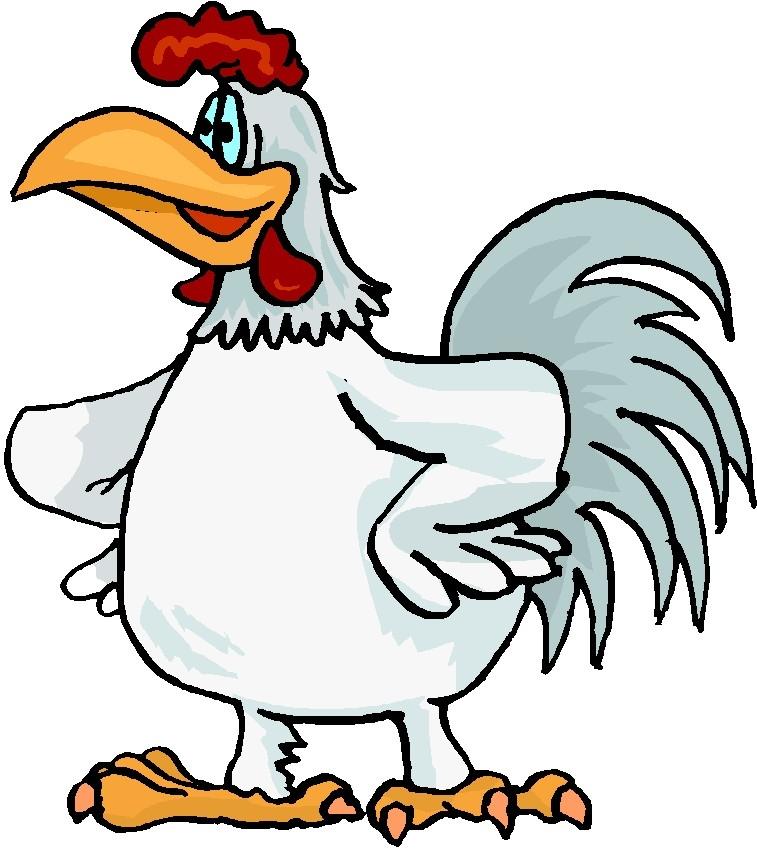 Kippen - Lesmateriaal - Wikiwijs