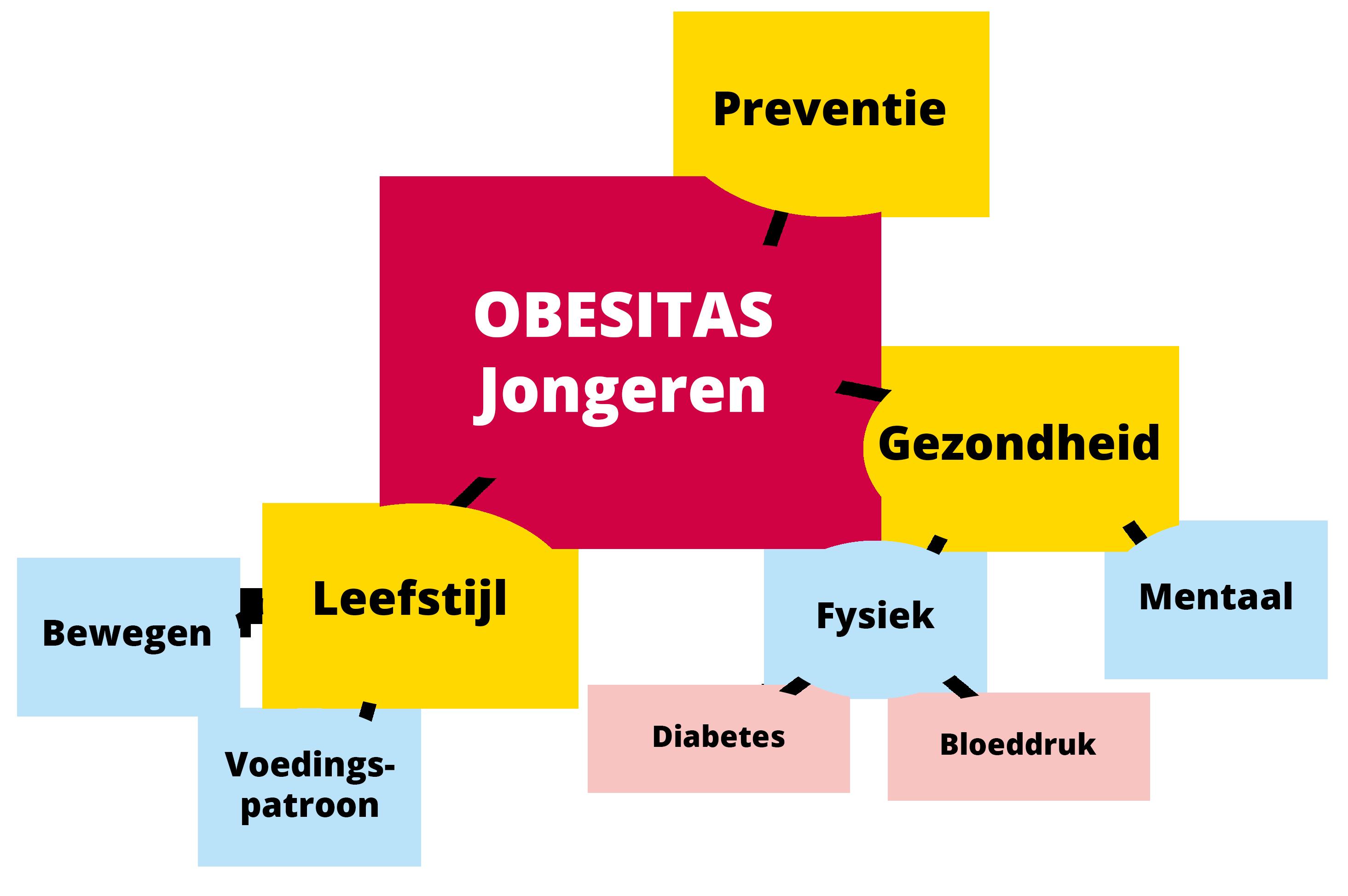 Oriënteren voorbeeld obesitas